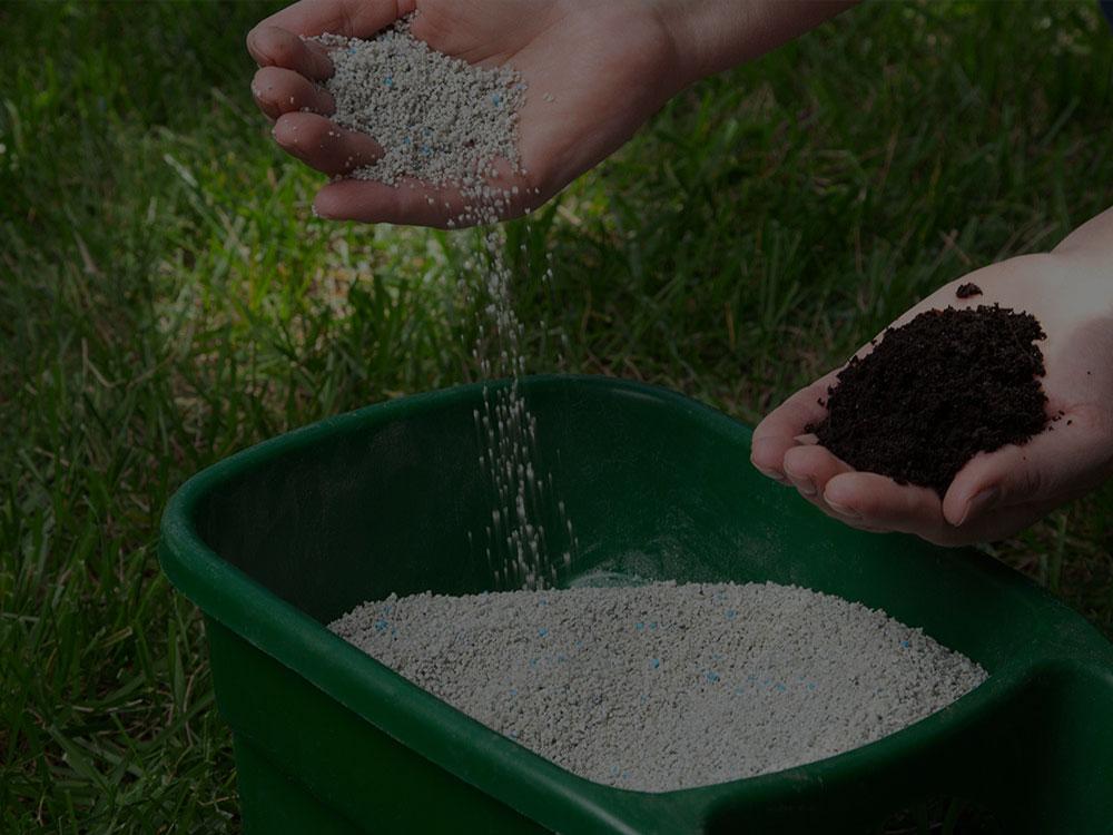 Hamptons Fertilization